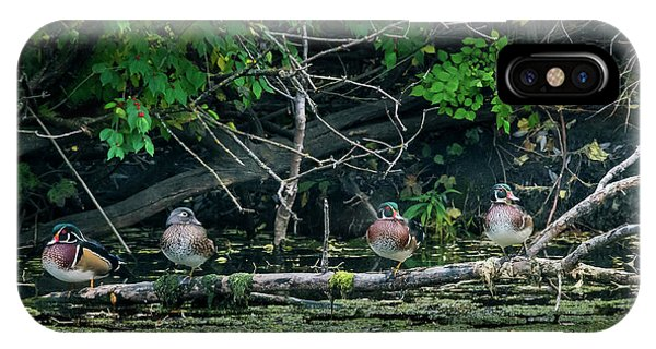 IPhone Case featuring the photograph Wood Ducks In A Row by Edward Peterson