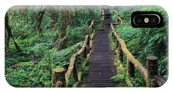 Lush iPhone Case - Wooden Bridge In Tropical Rain Forest by Korrakit Pinsrisook