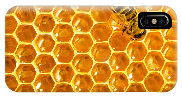 Eating iPhone Case - Working Bee On Honeycells by Studiosmart