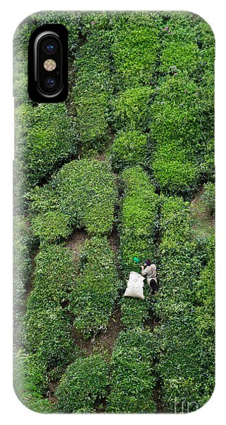 Culture iPhone Case - Working On The Tea Plantation In The by Atosan