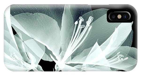 Floral iPhone X Case - Xray Image Of A Flower  Isolated On by Posteriori