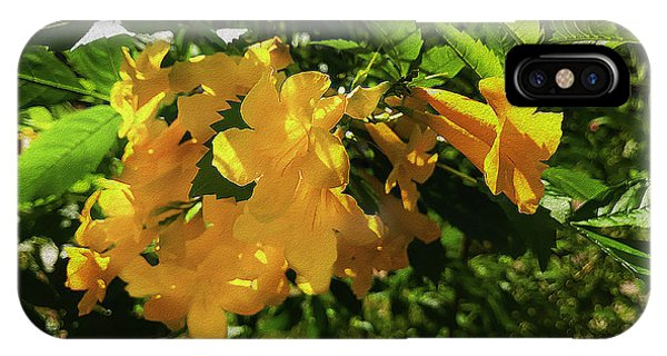 Yellow Trumpet iPhone Case - Yellow Bells - Sun And Shade by Robert J Sadler