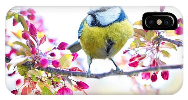 Yellow Blue Bird With Flowers IPhone Case