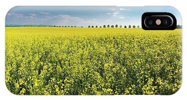 Germany iPhone Case - Yellow Canola Field And Blue Sky Spring Landscape by Matthias Hauser