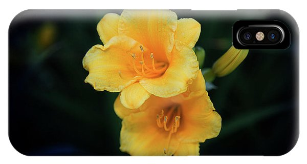 IPhone Case featuring the photograph Yellow Duo by Milena Ilieva