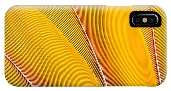 Parrots iPhone Case - Yellow Feathers Background Composition by Mustafanc