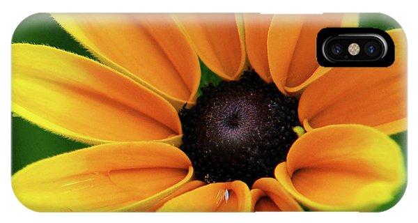 Yellow Flower Black Eyed Susan IPhone Case