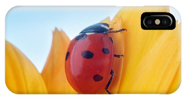 Small iPhone Case - Yellow Flower Petal With Ladybug Under by Anatoly Tiplyashin