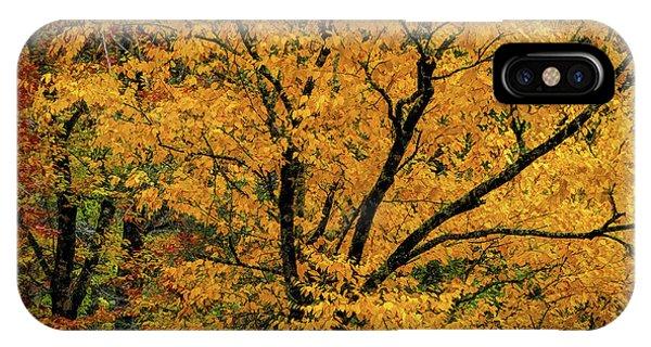 Yellow Tree Leaf Brilliance  IPhone Case