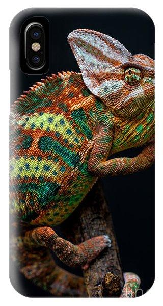 Cutout iPhone Case - Yemen Chameleon by Arturasker