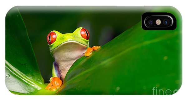 Space iPhone Case - Yo A Red Eye Tree Frog by Mark Bridger