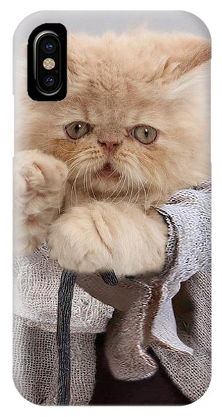 IPhone Case featuring the photograph Yoda Cat by Warren Photographic