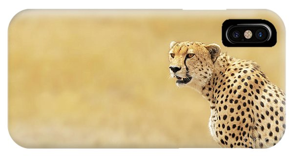 iPhone Case - Young Adult Cheetah Banner by Jane Rix