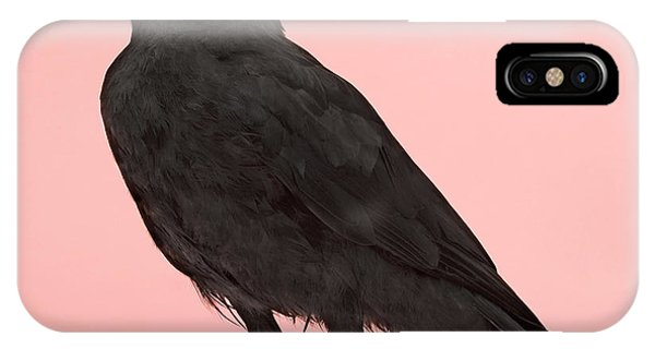 Claws iPhone Case - Young Carrion Crow - Corvus Corone 3 by Eric Isselee