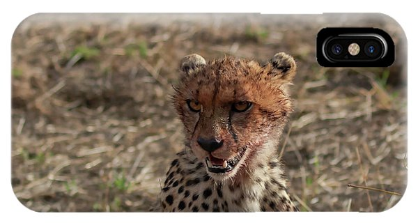 IPhone Case featuring the photograph Young Cheetah by Thomas Kallmeyer