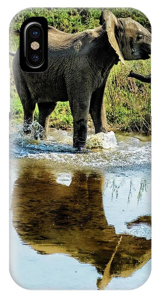 Young Elephant Playing In A Puddle IPhone Case