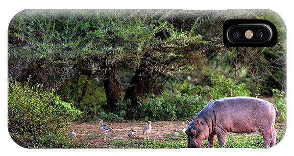 Small iPhone Case - Young Hippo Feeding On River Bank by Johan Swanepoel