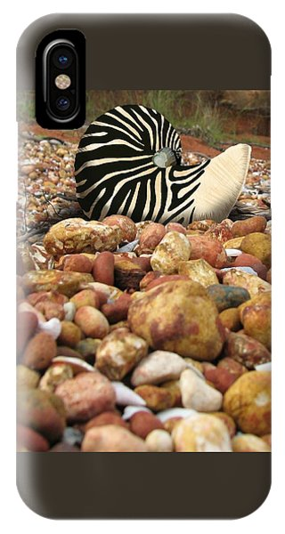 Zebra Nautilus Shell On Bauxite Beach IPhone Case