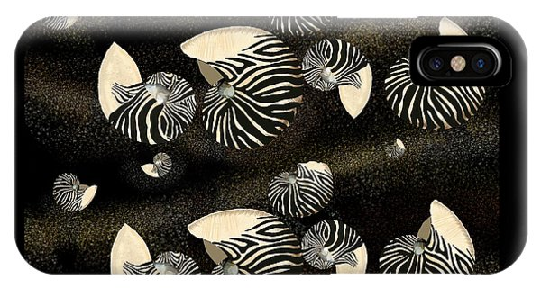 Zebra Pattern Nautilus Shells6 IPhone Case
