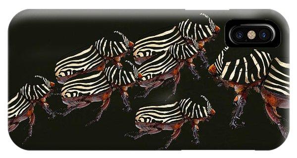 Zebra Pattern Rhinoceros Beetle 3 IPhone Case
