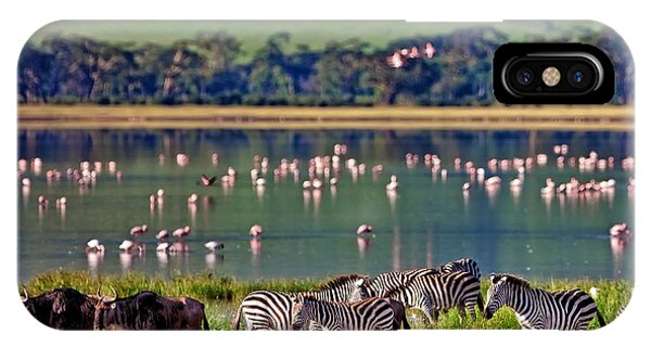 East Africa iPhone Case - Zebras And Wildebeests Walking Beside by Travel Stock
