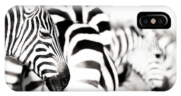 iPhone Case - Zebras Black And White by Jane Rix