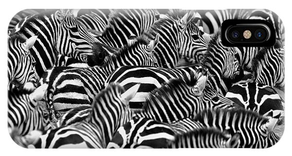 White Mountains iPhone Case - Zebras In The Big Herd During The Great by Photocechcz