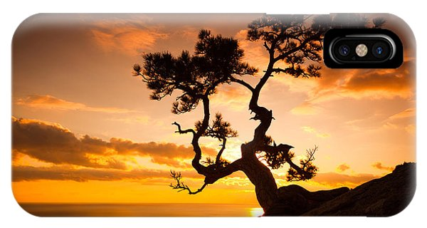 Cloudscape iPhone Case - Zen Is A Tree On The Cliff Rocks And by Yarygin
