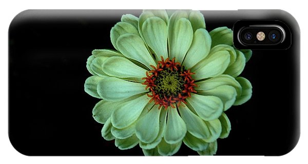 Zinnia Joy IPhone Case