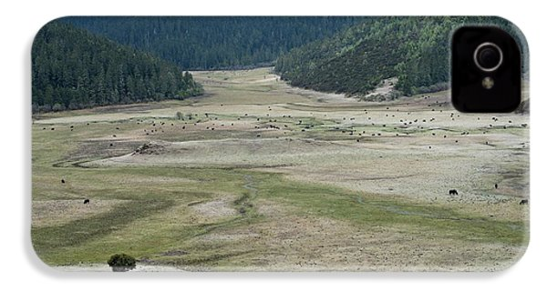 A Herd Of Yaks In Potatso National Park IPhone 4 Case by Tony Camacho