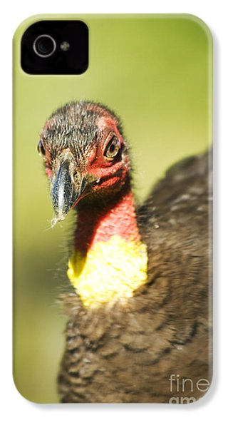 Brush Scrub Turkey IPhone 4 / 4s Case by Jorgo Photography - Wall Art Gallery