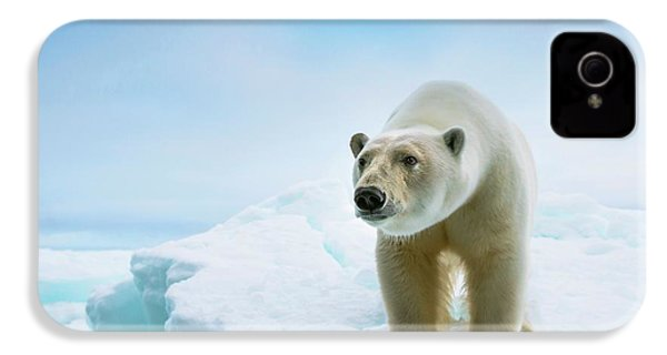 Close Up Of A Standing Polar Bear IPhone 4 Case by Peter J. Raymond
