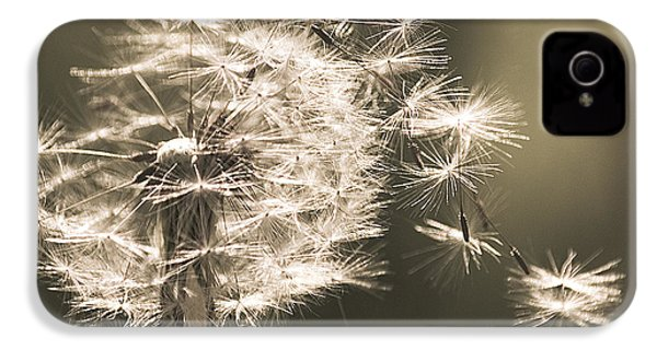 IPhone 4 Case featuring the photograph Dandelion by Yulia Kazansky