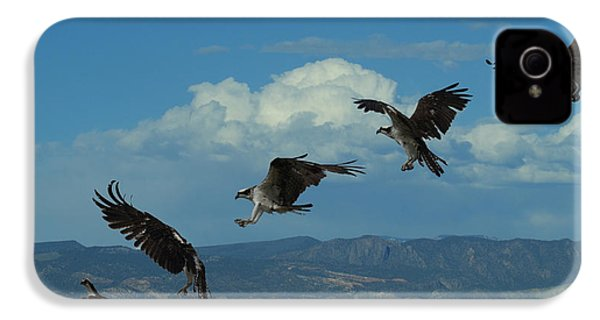 Landing Pattern Of The Osprey IPhone 4 / 4s Case by Ernie Echols