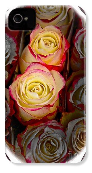 Love Is A Rose IPhone 4 / 4s Case by Al Bourassa