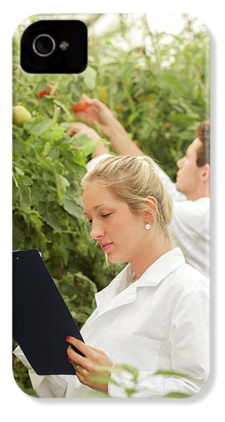 Scientists Examining Tomatoes IPhone 4 Case by Gombert, Sigrid