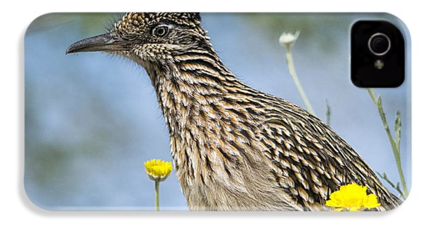 The Greater Roadrunner  IPhone 4 / 4s Case by Saija  Lehtonen