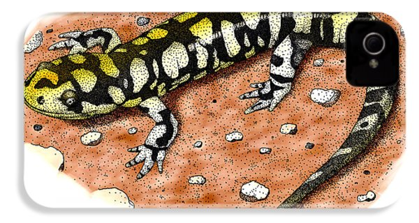 Tiger Salamander IPhone 4 Case by Roger Hall