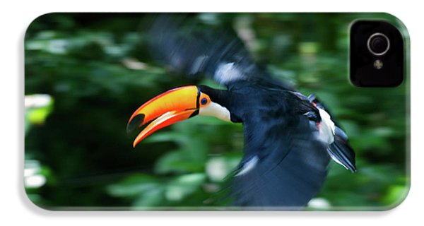 Toco Toucan (ramphastos Toco IPhone 4 Case by Andres Morya Hinojosa