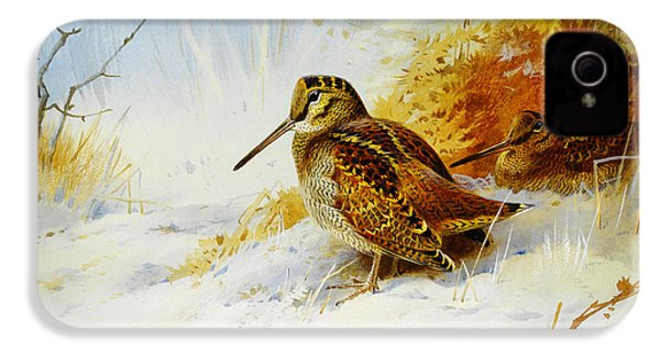 Winter Woodcock  IPhone 4 Case by Celestial Images
