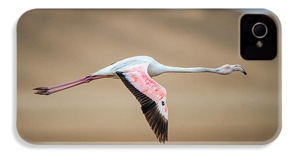 Greater Flamingo Phoenicopterus Roseus IPhone 4 Case by Panoramic Images