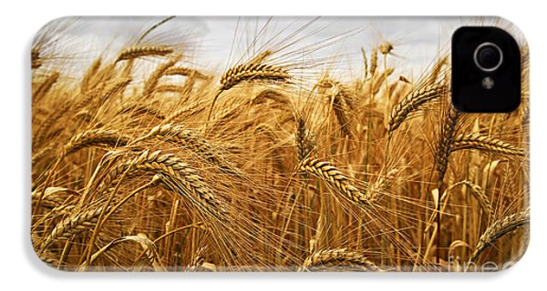Wheat IPhone 4 Case
