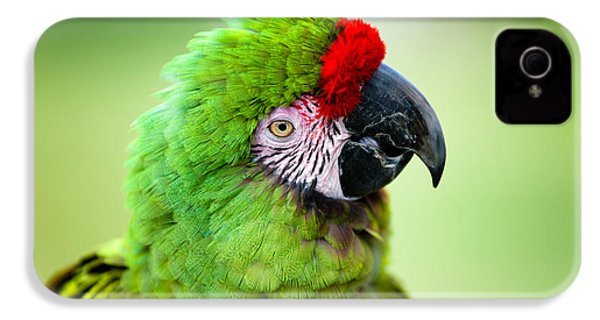 Parrot IPhone 4 Case by Sebastian Musial
