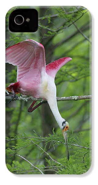 Usa, Louisiana, Lake Martin IPhone 4 Case by Jaynes Gallery