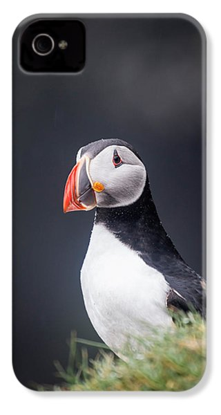 Atlantic Puffin Fratercula Arctica IPhone 4 Case