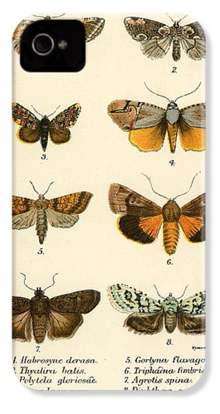 Butterflies IPhone 4 Case by English School