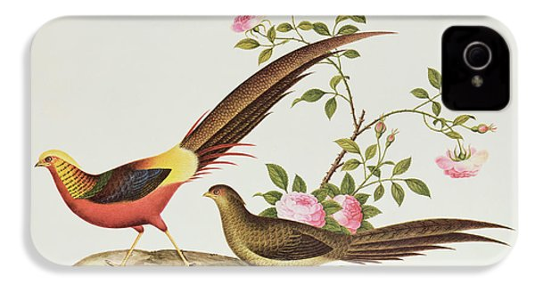 A Golden Pheasant IPhone 4 Case by Chinese School