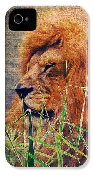 A Lion Portrait IPhone 4 Case by Angela Doelling AD DESIGN Photo and PhotoArt
