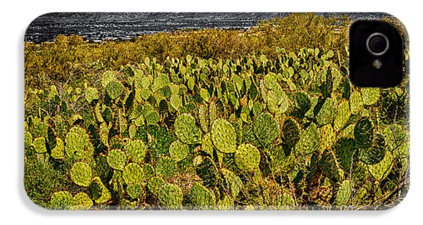 IPhone 4 Case featuring the photograph A Prickly Pear View by Mark Myhaver