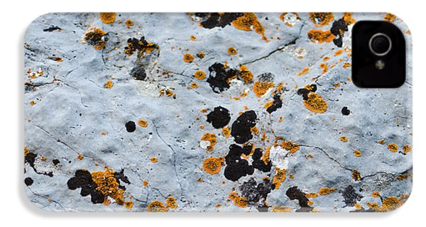 Abstract Orange Lichen 1 IPhone 4 Case by Chase Taylor